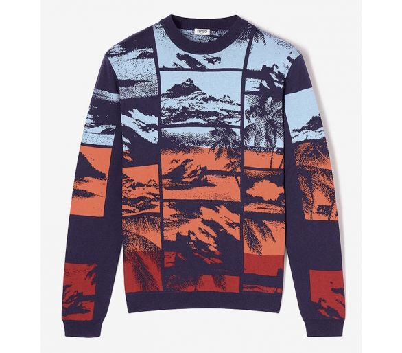 Tropical Ice Sweater kENZO